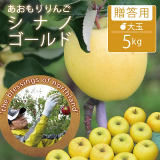 葉とらずシナノゴールド【贈答用】大玉5kg(14-16個/モールド詰)