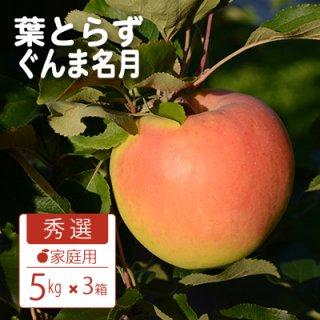 葉とらずぐんま名月【秀選】家庭用5kgx3(約42-54個)モールド詰※10月下旬から発送予定
