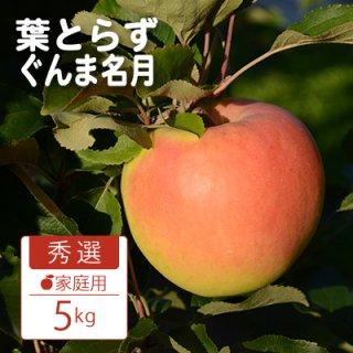 葉とらずぐんま名月【秀選】家庭用5kg(約14-18個)モールド詰※10月下旬から発送予定