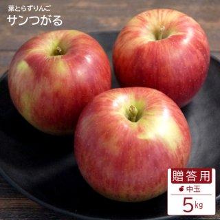 葉とらずサンつがる【贈答用】中玉5kg(約16-20個)モールド詰※9月上旬から発送予定です