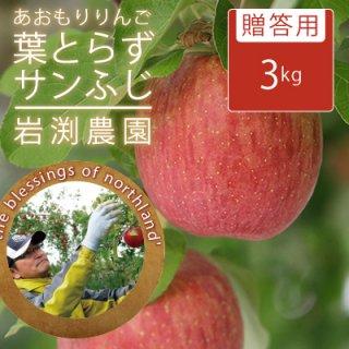 葉とらずサンふじ【贈答用】3kg(約9-12個)モールド詰※12/15以降から発送予定