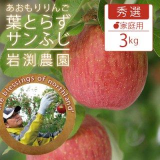 葉とらずサンふじ【秀選】家庭用3kg(約9-12個)モールド詰