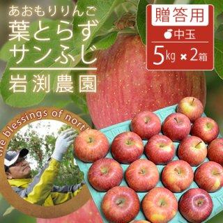 葉とらずサンふじ【贈答用】中玉5kg×2箱(約36-40個)モールド詰※12月初旬から発送予定