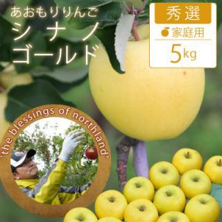 葉とらずシナノゴールド【秀選】家庭用5kg(約14-18個)モールド詰