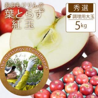 葉とらず紅玉【秀選】家庭用大玉5kg(約20-23個)モールド詰※10月上旬から発送開始