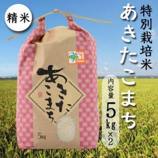 岩渕農園の特別栽培米「あきたこまち」精米10kg(5kgx2)