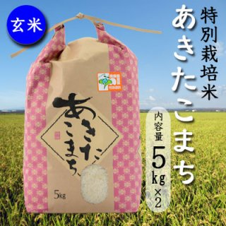 岩渕農園の特別栽培米「あきたこまち」玄米10kg(5kgx2)