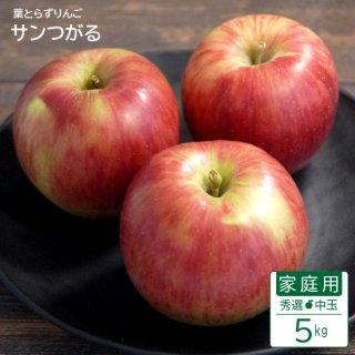 葉とらずサンつがる【秀選】家庭用中玉5kg(約16-20個)モールド詰※9月上旬から発送予定
