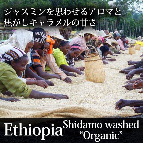 エチオピア・シダモ・ウォッシュト