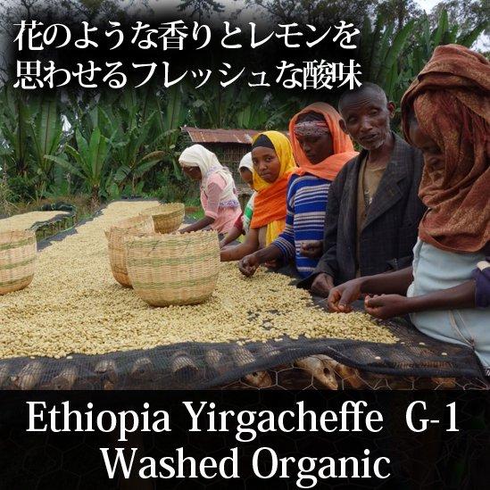 エチオピア・イルガチェフ・ウォッシュト「ゴーバス」
