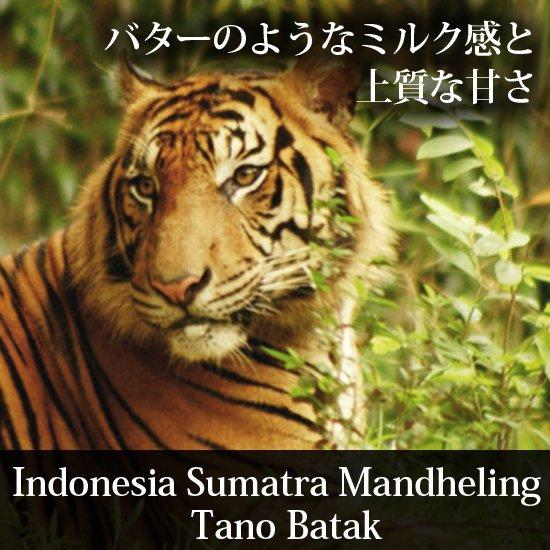インドネシア・スマトラ・マンデリン「タノバタック・ウタタラガ」
