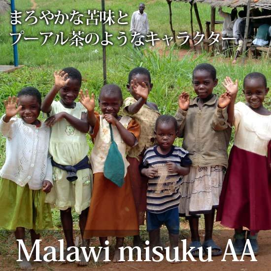 マラウィAA・ミスク・ゲイシャ