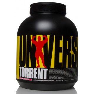 トレント 2.8kg