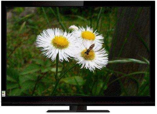 ミツマル MEK 液晶テレビ32型 ブラック LCT-3205W【中古品】