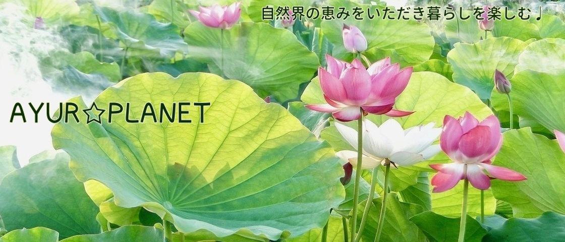 AYUR☆PLANET アーユルプラネット アーユルヴェーダの美と健康のセレクトショップへようこそ!