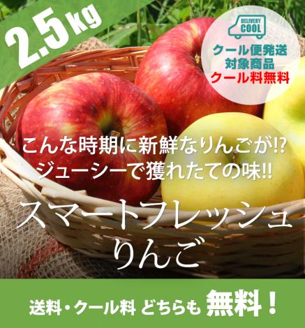 【数量限定】スマートフレッシュりんご 2.5kg  販売中