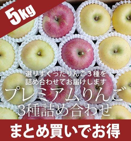 贈答用3種セット プレミアムりんご 4.5kg