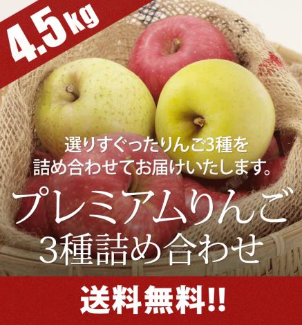 【11月28日出荷開始】贈答用3種セット プレミアムりんご 4.5kg
