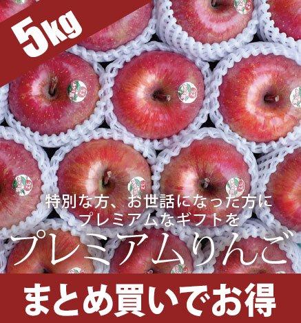 贈答用プレミアムりんご 4.5kg