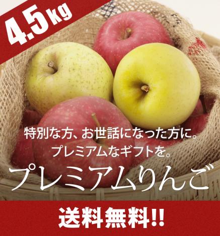 【11月28日出荷開始】贈答用プレミアムりんご 4.5kg