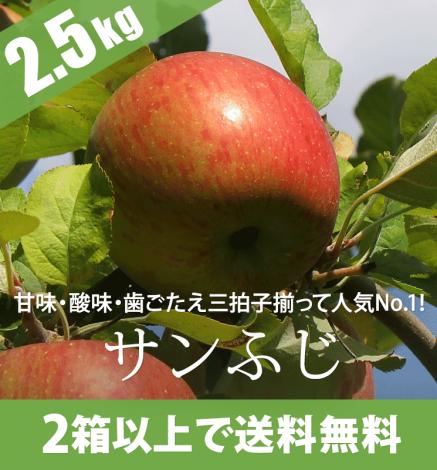 青森りんご サンふじ 2.5kg(6〜10個)