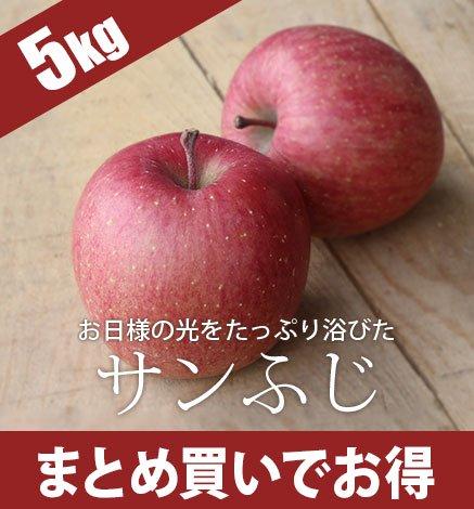 青森りんご サンふじ 4.5kg(14〜20個)