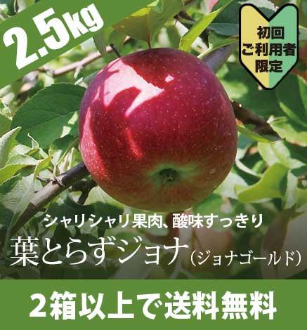 【予約:10月下旬〜:初回限定】青森りんご葉とらずジョナ(ジョナゴールド) 2.5kg(6〜10個)