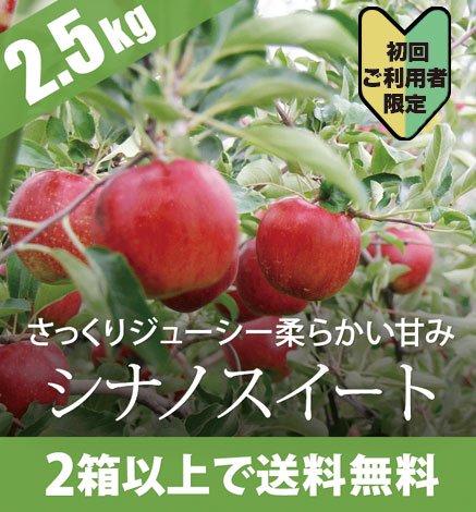 【初回ご利用者限定価格商品】青森りんご シナノスイート 2.5kg(6〜10個)