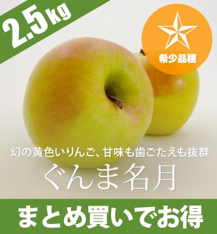 青森りんご ぐんま名月 2.5kg(6〜10個)