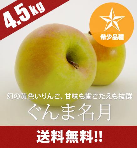 青森りんご ぐんま名月 4.5kg(14〜20個)