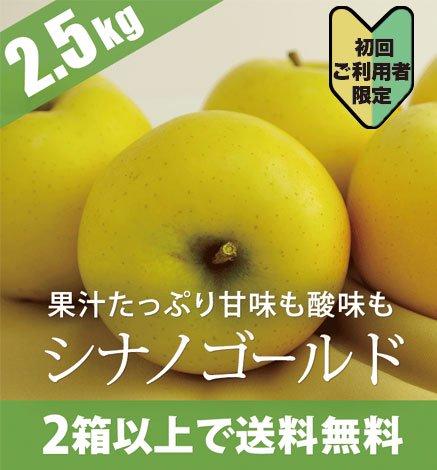 【初回ご利用者限定価格商品】青森りんご シナノゴールド 2.5kg(6〜10個)