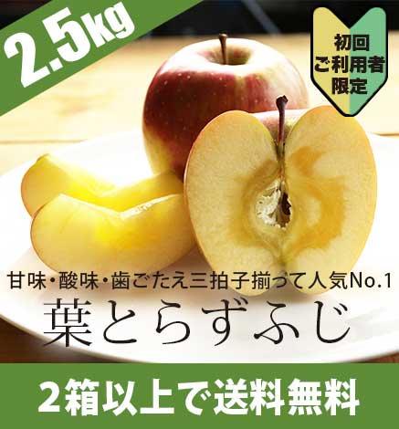 【初回限定】青森りんご 葉とらずふじ 2.5kg(6〜10個)