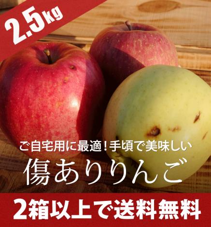 【傷あり】青森りんご 2.5kg