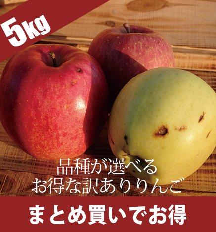 【訳あり】青森りんご 4.5kg