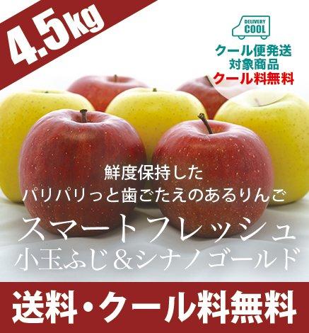 【数量限定】スマートフレッシュりんご 小玉ふじ&シナノゴールド 4.5kg 発売中