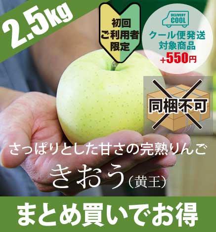 【初回ご購入者限定価格商品】【予約:9月上旬〜中旬出荷】青森りんご きおう(黄王) 2.5kg(6〜10個)