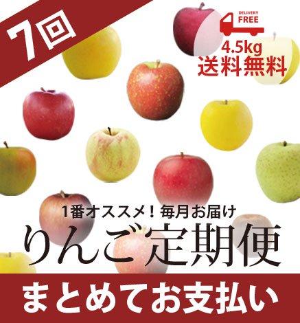 青森りんご定期便 4.5kg(7回コース/まとめてお支払い)