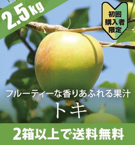 【初回ご購入者限定価格商品】【10月上旬】青森りんご トキ 2.5kg(7〜12個)