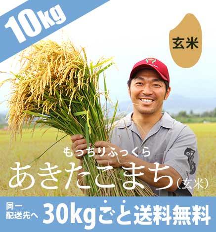 低農薬米あきたこまち(玄米) 10kg 《平成30年度産青森米》