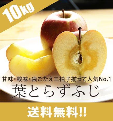 青森りんご 葉とらずふじ 9kg(24〜40個)