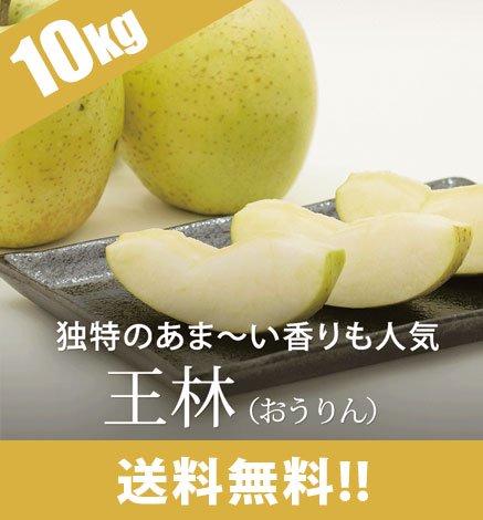【予約:11月中旬〜】青森りんご 王林(おうりん) 9kg(26〜40個)