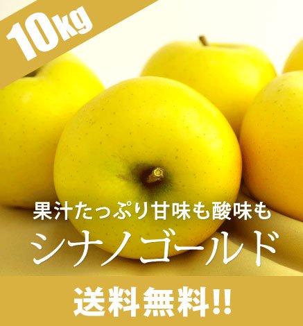【予約】青森りんご シナノゴールド 9kg(26〜40個)
