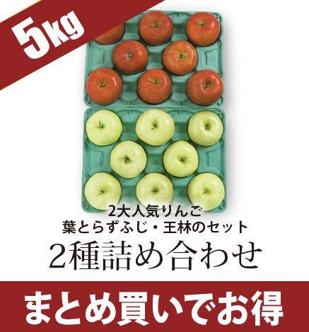 通常品りんご 2種詰め合わせ 4.5kg(13~20個)