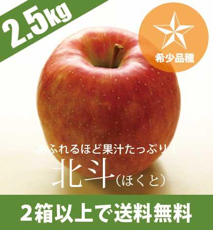 青森りんご 北斗(ほくと) 2.5kg(5〜10個)