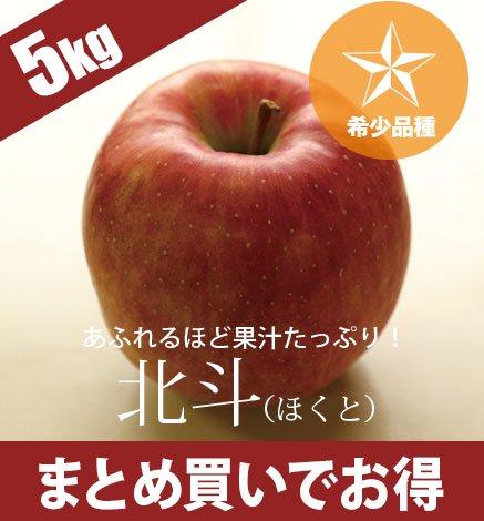 青森りんご 北斗(ほくと) 4.5kg(10〜20個)