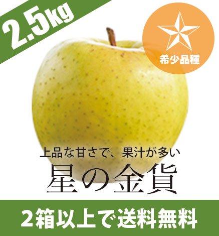 【希少品種】青森りんご 星の金貨 2.5kg(7〜12個)