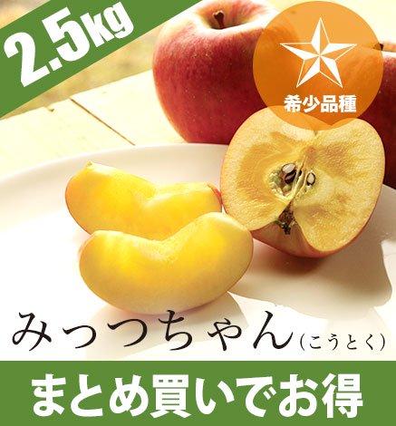 青森りんご みっつちゃん(こうとく) 2.5kg(8〜12個)