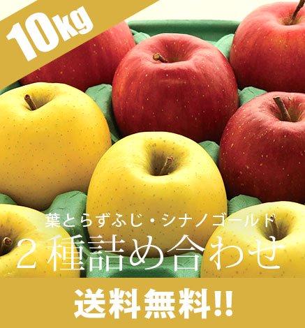 【予約】通常品りんご 葉とらずふじ・シナノゴールド2種詰め合わせ 9kg(26~40個)