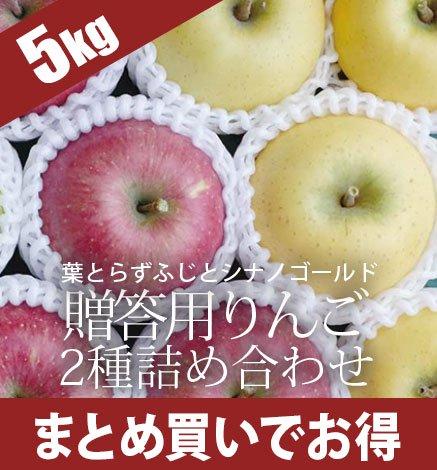 贈答用りんご 葉とらずふじ・シナノゴールド2種詰め合わせ 4.5kg(13~18個)