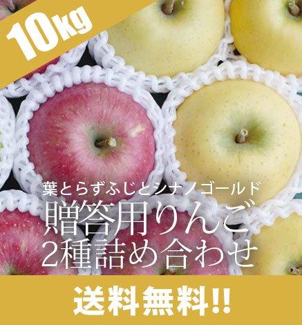 贈答用りんご 葉とらずふじ・シナノゴールド2種詰め合わせ 9kg(26~36個)